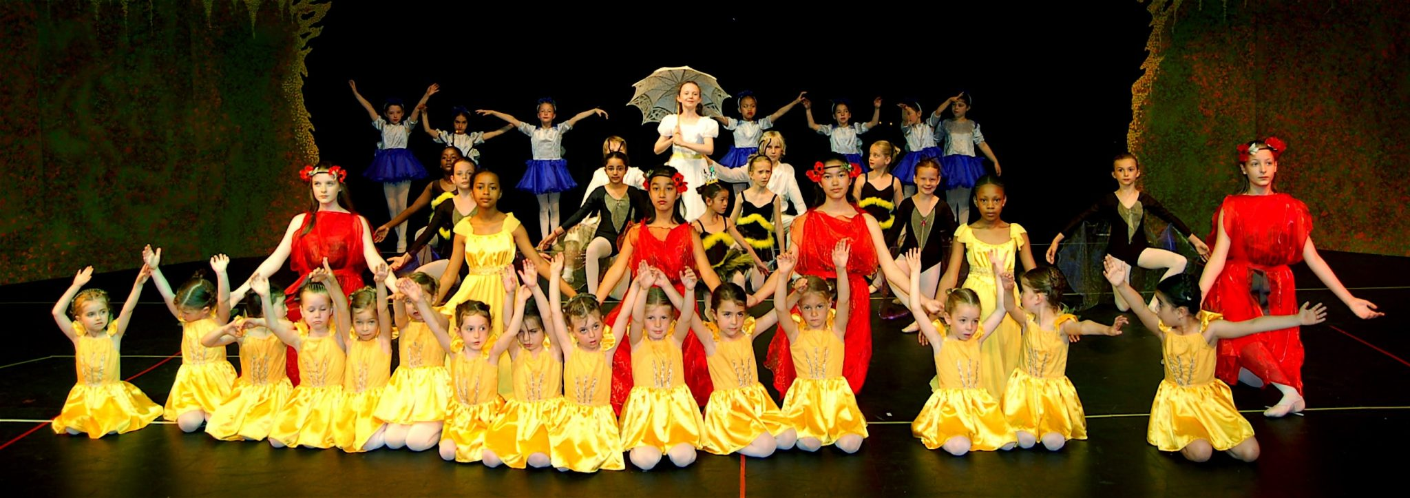 Recommended ballet school